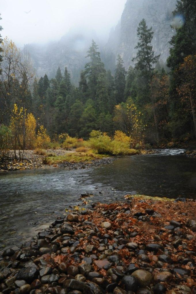 11-09 Yosemite rain_3591